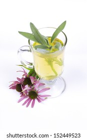 Teacup with garden sage tea and Echinacea / Salvia officinalis/