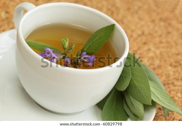 Teacup with garden sage tea / Salvia officinalis/