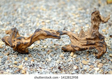 Teak Driftwood on the stone floor