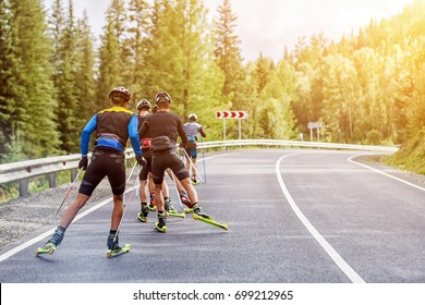 Team biotlonists in sports equipment, protective helmets hold in the hands ski poles, go on roller skis, ski along the asphalt road in the mountainous area of Altai along the forest on a summer day