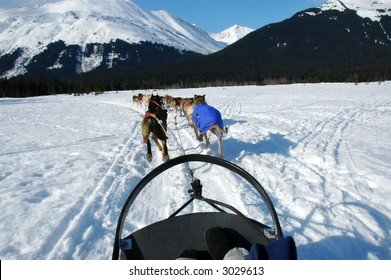 Team of dogs pulling a sled through the snow