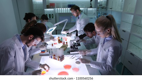 Team of Forensics Scientists Working in Scientific Laboratory, Medical Activity for Researchers in Science Lab