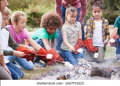 Team Leader With Group Of Children On Outdoor Activity Trip Toasting Marshmallows Over Camp Fire