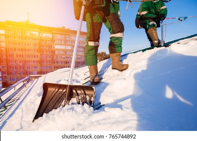 Team of male workers clean roof of building from snow with shovels in securing belts of mantra.