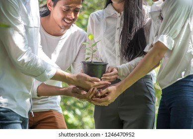 Team teamwork new generation join hand together concept, Power of male and female volunteer charity tree planting at park.Ecological friendly and sustainable environment concept