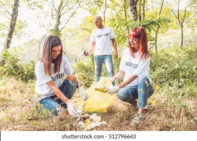 Team of volunteers cleaning wood from trash