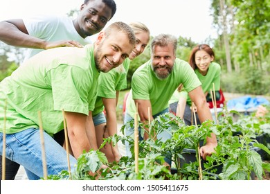 Team volunteers with many plants in a planting campaign for climate protection