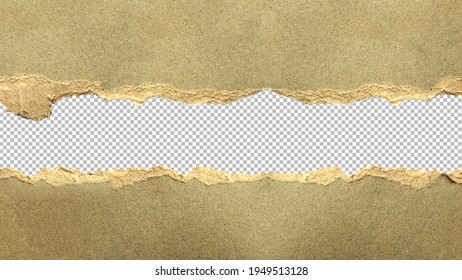 Tear off gray paper for abstract background designs and copy area.