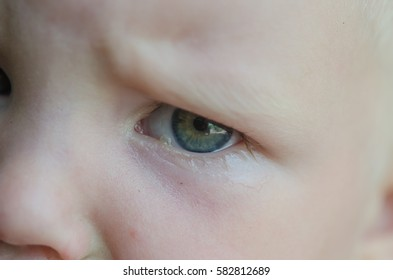 Tears in the eyes of a young child. Crying child.