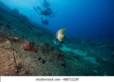 Technical Divers swim over WW2 shipwreck Truk Lagoon
