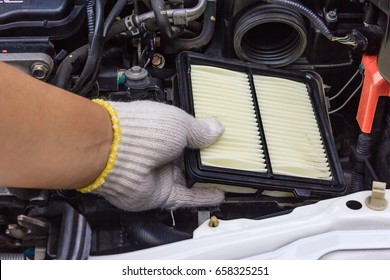 Technician change a new car air filter, Put new wet air filter on car engine