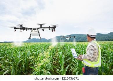 Technician farmer use wifi computer control agriculture drone on sweet corn field