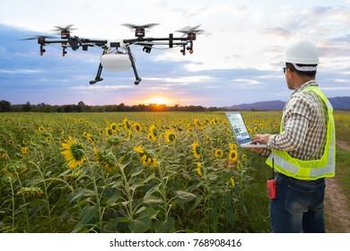 Technician farmer use wifi computer control agriculture drone on the sunflower field, Smart farm concept