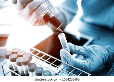 technician of health with test tubes in the clinical lab for analytical , Medical, pharmaceutical and scientific research and development concept.