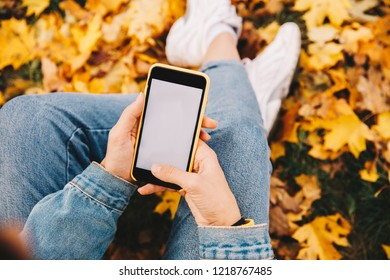 Technologies. Autumn walk. Cropped image of girl in jean clothes using a smartphone while sitting on the ground in the park; top view