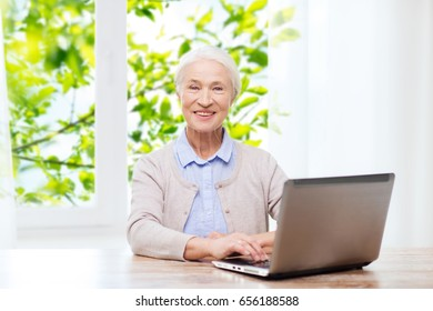 technology, age and people concept - happy senior woman with laptop computer at home over window and green natural background