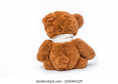 Teddy bear back soft toy on white background.