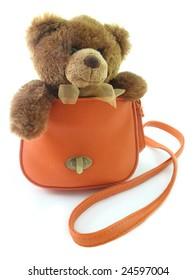 Teddy bear in a bag