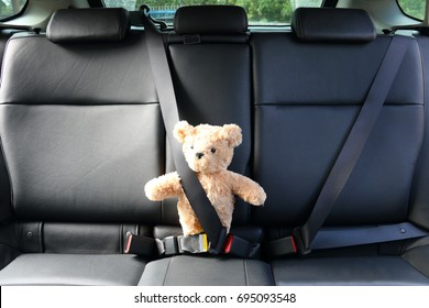 Teddy Bear bucket with safety belt in a car in driving safe concept