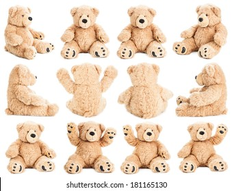 Teddy bear in different positions