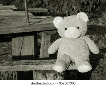 Teddy bear doll sit alone ,white and black