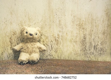 Teddy bear drenched on Marble floor. just feel so empty, Vintage style.