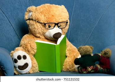 teddy bear with glasses reading a book