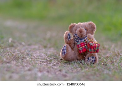 Teddy bear holding a red gift box