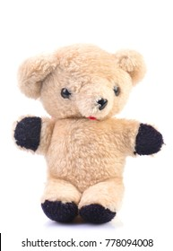 Teddy bear isolated on a white background
