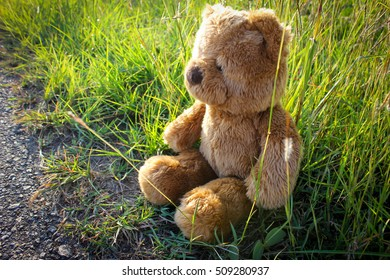 Teddy bear lonely sitting beside the road.