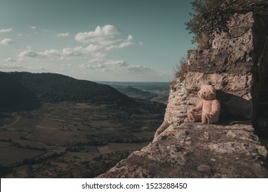 teddy bear looks down into the valley from a wall