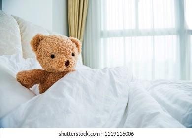 Teddy Bear lying in comfort bed