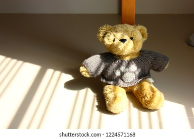 teddy bear on floor with shadow of window