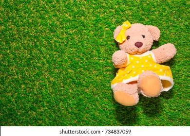 Teddy bear on green grass.
