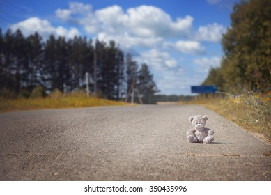 Teddy bear on the road in the woods