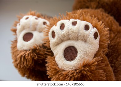 A Teddy bear. Bear paws. Old children's toy. Paw print. Bear track