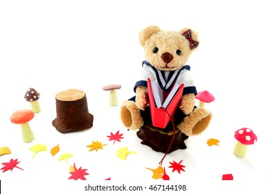 Teddy bear reading a book in the woods in the fall of reading