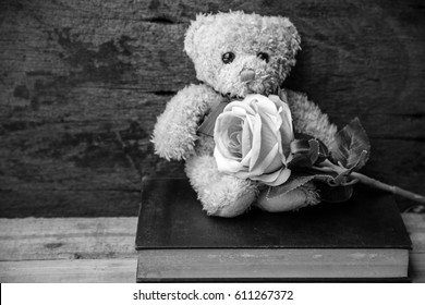 Teddy bear with rose sit in room,Love,Black and white