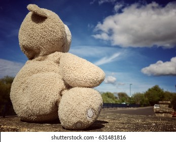 Teddy bear sitting alone on the wall brick and looking out of the road with blurry blue sky and cloudy background, copy space