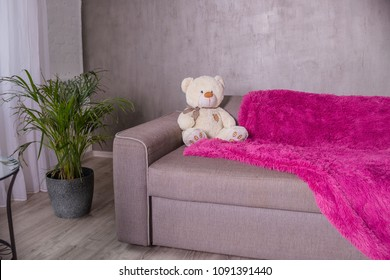 Teddy Bear - sitting on sofa couch with purple blanket, plaid. Palm tree as home plant is near sofa.Broun beige teddy bear, soft toy.Copy space