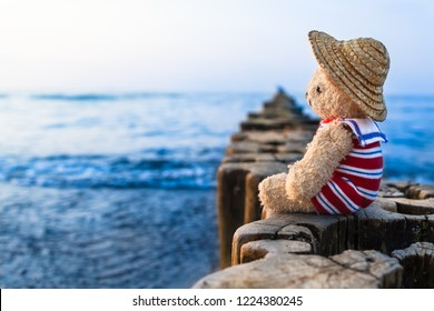 Teddy bear at summer vacation sit on row of wooden groynes, wear straw hat and striped sailor suit, take a look toward blue water horizon (copy space)