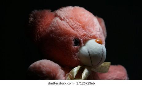 Teddy Protrait Toy Soft blackwhite