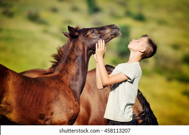 Teen boy playing with horse in paddock