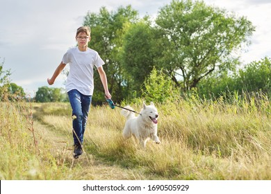Teen boy running with dog, playing owner and pet in summer meadow, scenic sunset landscapes background, copy space