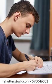 Teenage boy doing homework at his desk at home