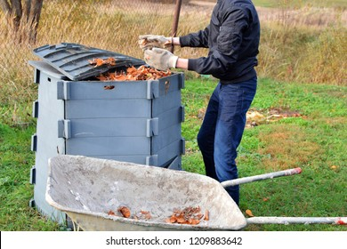 Teenage boy throwing dry autumn leaves in grey composting container from old metal wheelbarrow. Seasonal backyard cleaning concept.