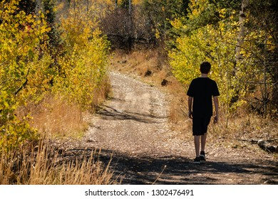 A teenage boy walks along a wilderness path in the country during autumn with golden yellow foliage and dreamy shadows. He is dressed in black shorts and t-shirt on a bright warm day.