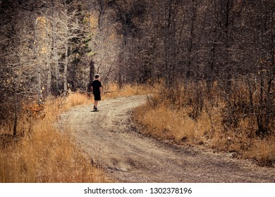A teenage boy walks on a lonely dirt road through a forest of bare aspen trees and golden grasses during Autumn, while carrying a large branch.