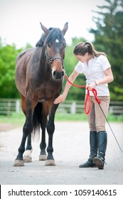 Teenage equestrian girl owner near her bay horse checking for leg injury after sport training. Outdoors vertical colored summertime image. Slightly filtered.