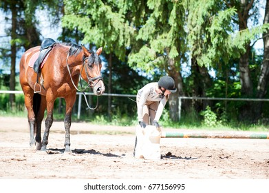 Teenage girl equestrian at horseriding school manege preparing the obstacles for training. Vibrant colored summertime outdoors horizontal image.